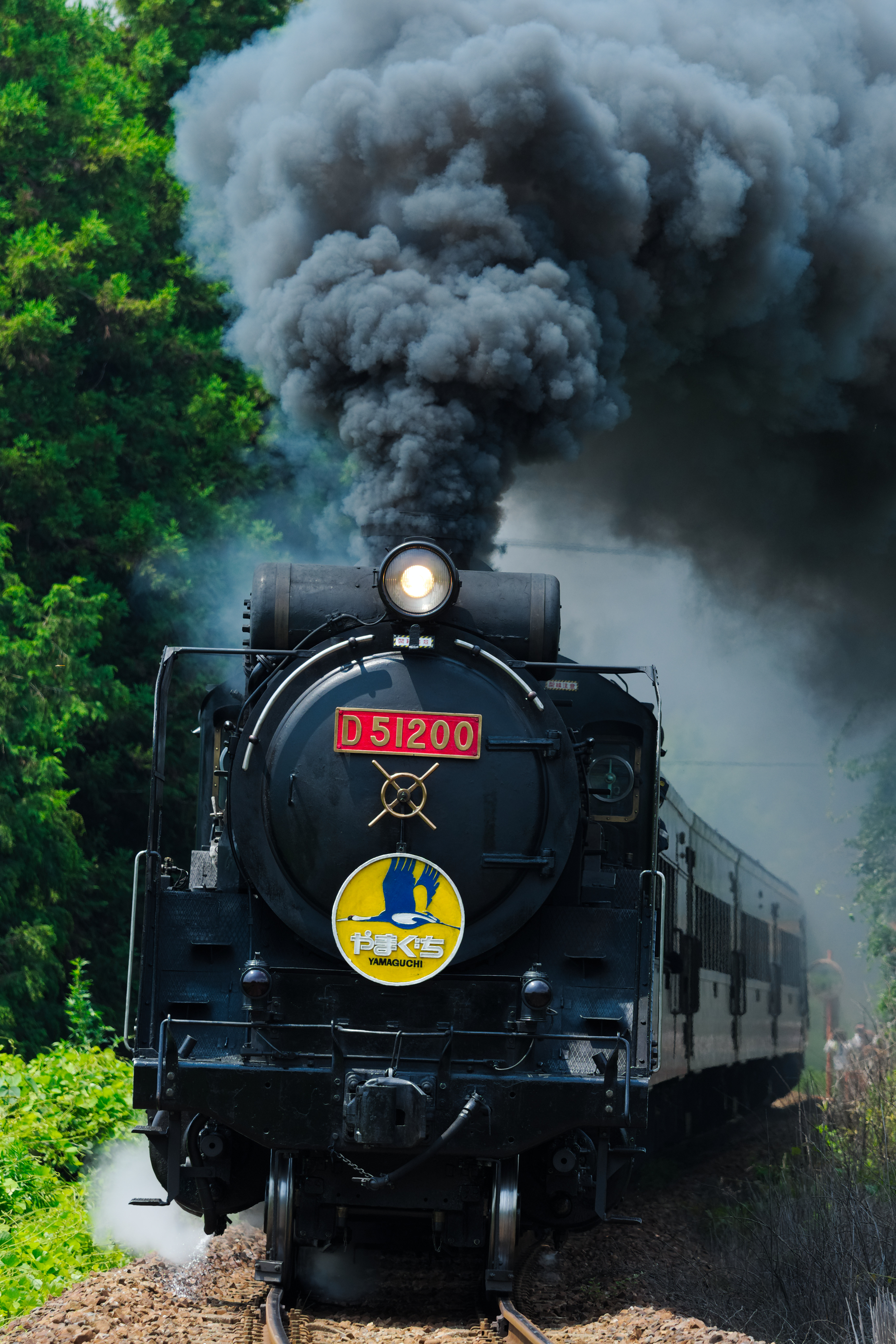 SLやまぐち号運行40周年記念 D51 200赤プレート